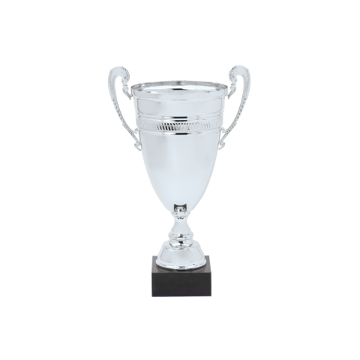 "DTC45-C 20"" Silver Metal Cup"