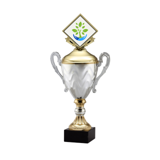 """AMC15-C 13"""" Gold 