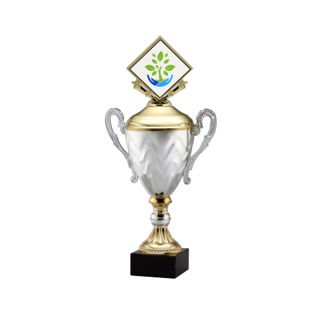 """AMC15-D 11"""" Gold 