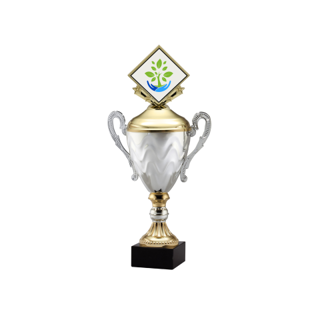"""AMC15-E 10"""" Gold 