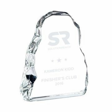 Optical Iceberg Award | Engraving Included
