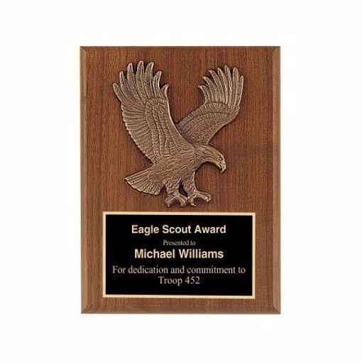 """Eagle Casting Plaque 6"""" x 8""""   Engraving Included"""