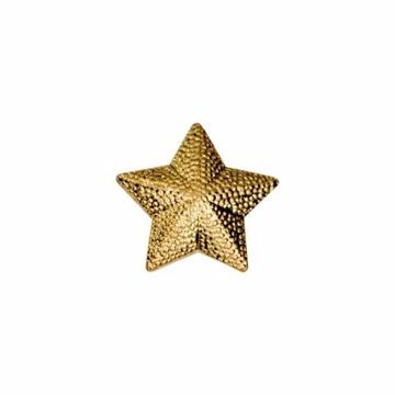 Star Letterman Jacket Pin