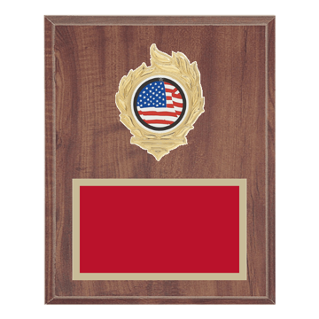 "8"" x 10"" American Flag 