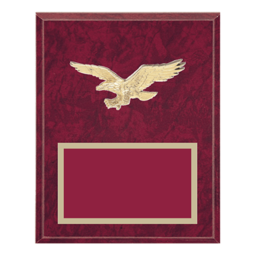 "8"" x 10"" Eagle Plaque with gold background plate, colored engraving plate and gold 3D Eagle medallion."
