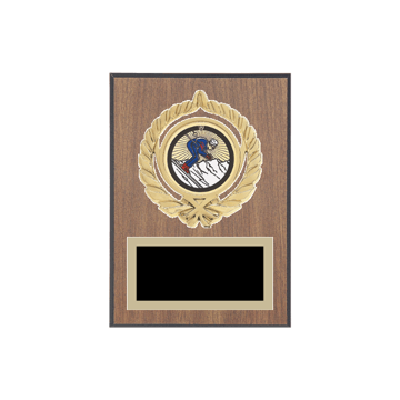 "5"" x 7"" Skiing Plaque with gold background plate, colored engraving plate, gold open wreath medallion holder and Skiing insert."
