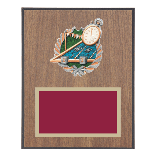 """8"""" x 10"""" Swimming Plaque with gold background plate, colored engraving plate and full color 3D resin Swimming medallion."""
