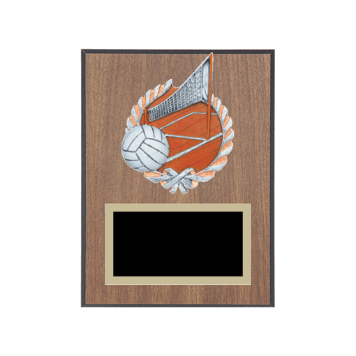 "6"" x 8"" Volleyball Plaque with gold background plate, colored engraving plate and full color 3D resin Volleyball medallion."