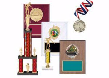 Picture for category Billiards Trophies & Awards