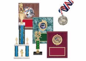 Picture for category Hockey Trophies & Awards