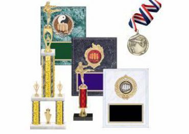 Picture for category Martial Arts Trophies & Awards