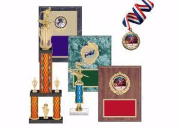 Picture for category Skiing Trophies & Awards