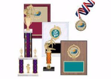 Picture for category Surfing Trophies & Awards