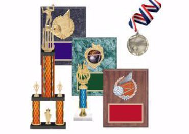 Picture for category Volleyball Trophies & Awards