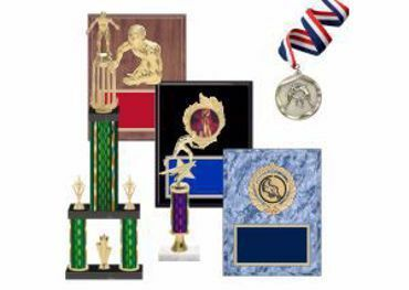 Picture for category Wrestling Trophies & Awards