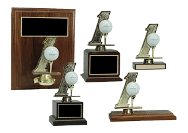 Picture for category Hole In One Displays