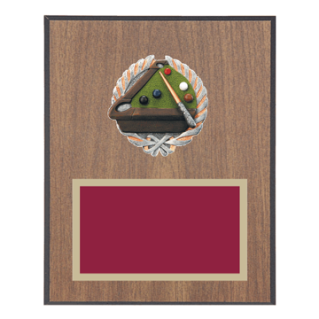 """8"""" x 10"""" Pool   Billiards Plaque with gold background plate, colored engraving plate and full color 3D resin Pool   Billiards medallion."""