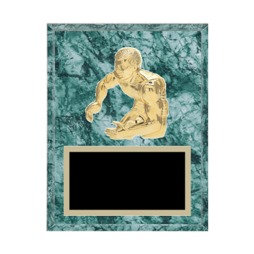 "7"" x 9"" Wrestling Plaque with gold background plate, colored engraving plate and gold 3D Wrestling medallion."