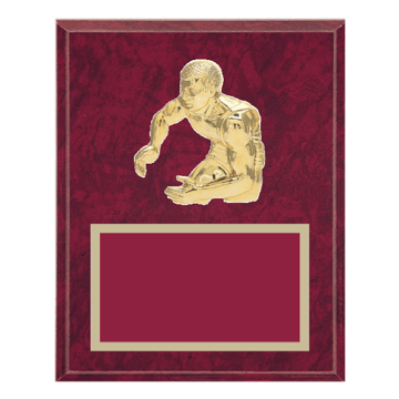 "8"" x 10"" Wrestling Plaque with gold background plate, colored engraving plate and gold 3D Wrestling medallion."