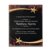 Red Marble Shooting Star Acrylic Award Plaque with black engraving area wrapped inside two shooting stars