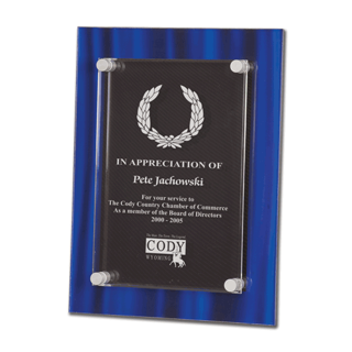 """Blue Velvet Acrylic Award Plaque with screen printed back and clear acrylic cover suspended by silver hardware 9"""" x 11"""""""